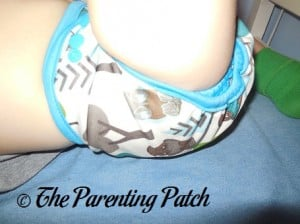 Leg of Borrowed Planet All-in-Two Cloth Diaper on Toddler