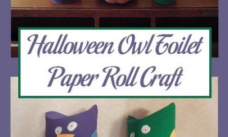 Halloween Owl Toilet Paper Roll Craft