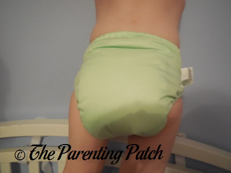 Grasshopper bumGenius Freetime Cloth Diaper 7