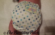 Dot You See Me? Winning Colors Baby Cover: Daily Diaper