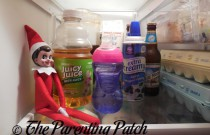 The Elf and the Fridge: The Elf on the Shelf Day 3
