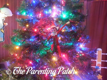 The Elf in the Christmas Tree