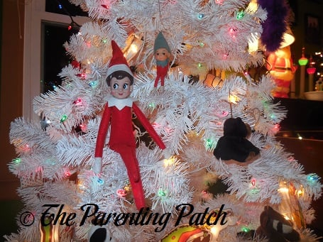 The Elf in the Elf Tree
