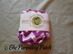 Nicki's Diapers Newborn Bamboo All-in-One in Package