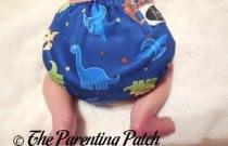 Rawr Imagine Newborn Stay-Dry All-in-One: Daily Diaper