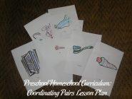 Preschool Homeschool Curriculum: Coordinating Pairs Lesson Plan
