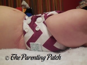 Side of Nicki's Diapers Newborn Bamboo All-in-One at Three Months