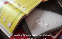 Preschool Homeschool Curriculum: More Prewriting Skills Lesson Plan