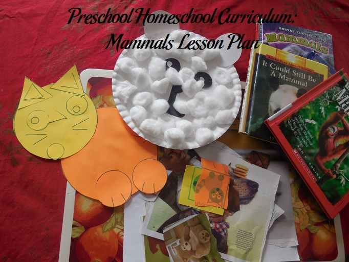 Mammals Preschool Activities