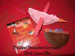 Birds Preschool Activities