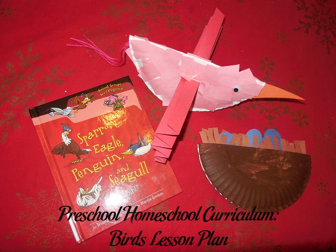 Birds Preschool Activities