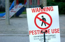 Common Pesticide May Increase ADHD Risk