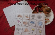 Preschool Homeschool Curriculum: Animal Homes and Food Lesson Plan