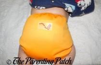 Pumpkin Rumparooz Newborn Diaper Cover: Daily Diaper
