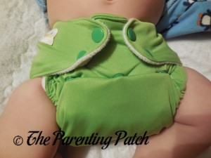 Turtle Diaper Rite One-Size All-in-One