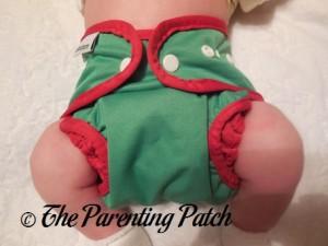 Mistletoe Best Bottom Diapers Cover