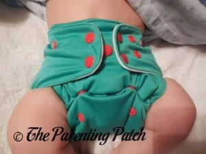 Front of Happy Laladays Lalabye Baby One-Size Cloth Diaper at Four Months © 2015 Heather Johnson
