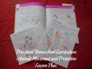 Animal Movement and Protection Preschool Activities
