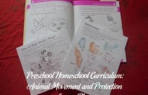 Preschool Homeschool Curriculum: Animal Movement and Protection Lesson Plan