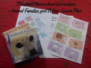 Animal Families and Babies Preschool Activities