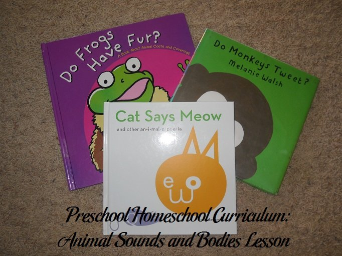 Animal Sounds and Bodies Preschool Books