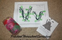 Preschool Homeschool Curriculum: Letter V Lesson Plan