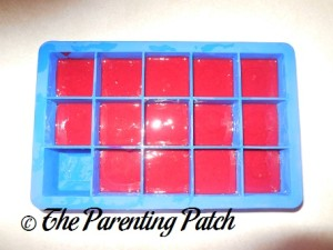 Homemade Blackberry Baby Food in Silicone Ice Cube Trays