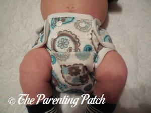 Paisley Capri Newborn Diaper Cover 6