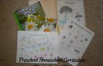 Preschool Homeschool Curriculum: Plants Lesson Plan