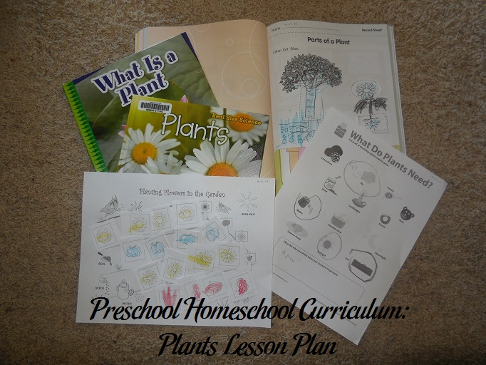 Plants Preschool Activities