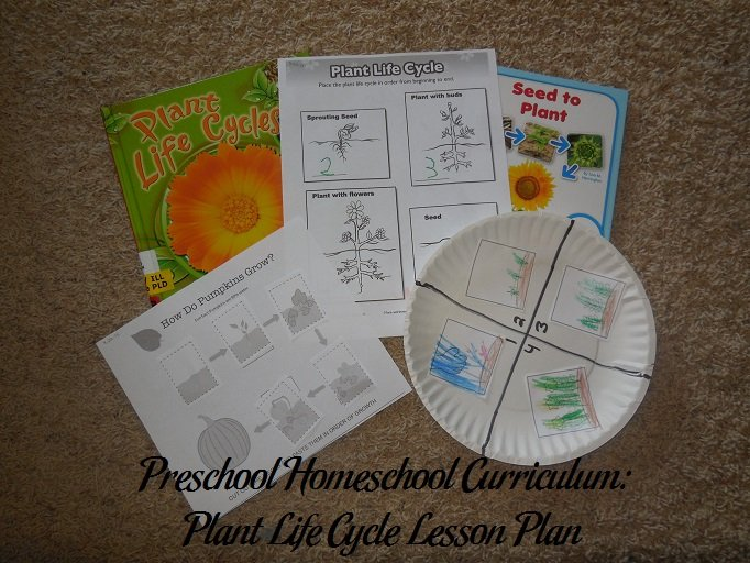 Plant Life Cycle Preschool Activities
