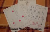 Preschool Homeschool Curriculum: Number 1 Lesson Plan