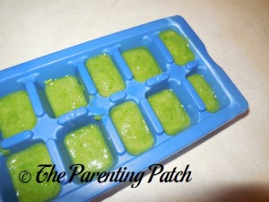 Homemade Green Bean Baby Food in Ice Cube Tray