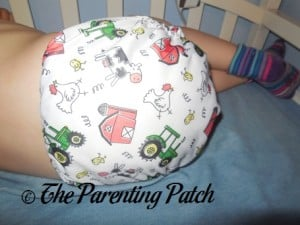 Back of ecoAble Bamboo All-in-One Cloth Diaper with Pocket on 30 Pound Preschooler 1