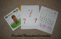Preschool Homeschool Curriculum: Number 7 Lesson Plan