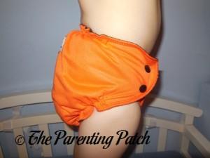 Trick or Cheeks AppleCheeks Envelope Diaper Cover 10