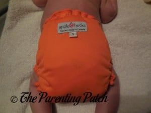 Back of Size 1 AppleCheeks Envelope Diaper Cover at Ten Pounds