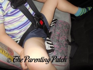 Using the Zebra Smart Bottoms Seat Saver in a Car Seat 1