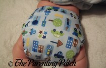 Little City Diaper Rite One-Size All-in-One: Daily Diaper
