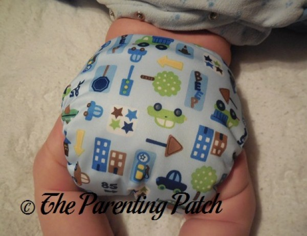 Little City Diaper Rite One-Size All-in-One 7