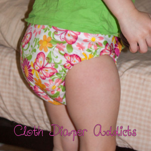 Butterflies Blueberry One-Size Deluxe Pocket Diaper 4