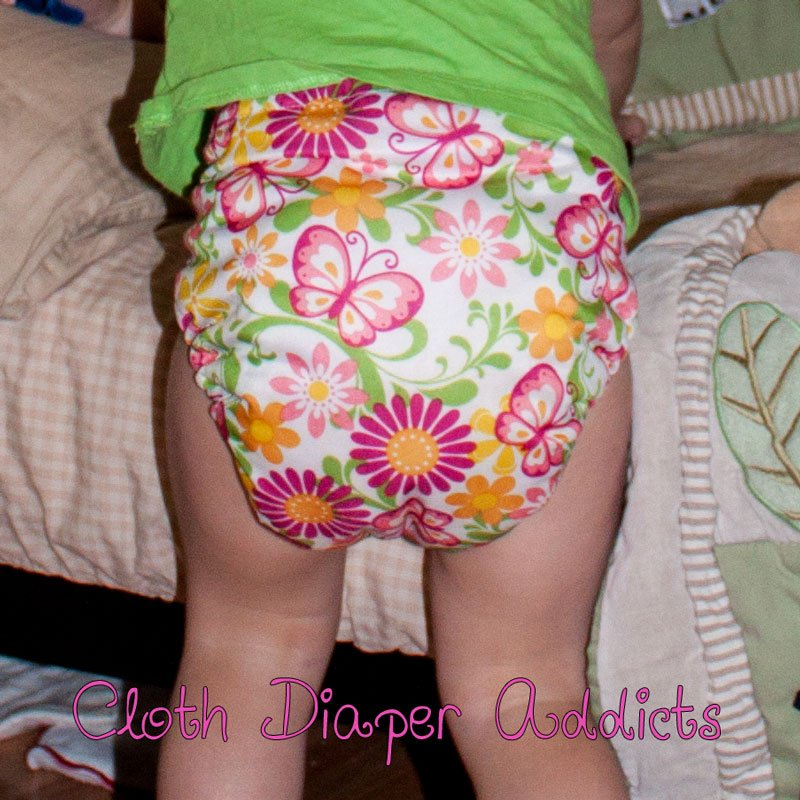 Butterflies Blueberry One-Size Deluxe Pocket Diaper 5
