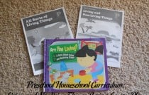 Preschool Homeschool Curriculum: Living and Nonliving Things Review Lesson Plan