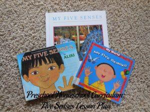 Five Senses Preschool Activities
