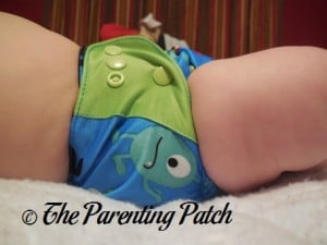 Monsters ecoAble Pocket Diaper with Bamboo Insert 5