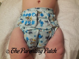 Front of Sweet Pea Diapers Bamboo All-in-One on 18 Pound Infant