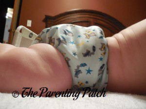 Side of Sweet Pea Diapers Bamboo All-in-One on 18 Pound Infant 2