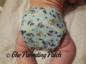 Back of Sweet Pea Diapers Bamboo All-in-One on 18 Pound Infant