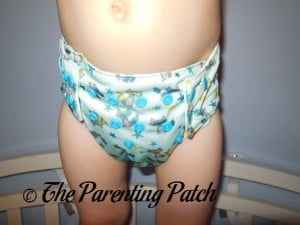 Front of Sweet Pea Diapers Bamboo All-in-One on 30 Pound Preschooler 2