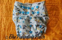 Sweet Pea Diapers Bamboo All-in-One Review